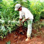 Seminario Economía Agropecuaria