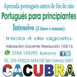 Curso intensivo de Portugués nivel avanzado y nivel básico