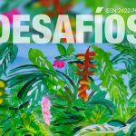 """Lanzan un nuevo número de la revista digital """"Desafíos"""""""